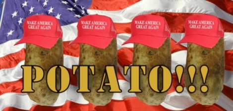 POTATO 1 HEADER